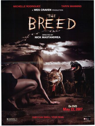 Affiche américaine de 'The Breed'