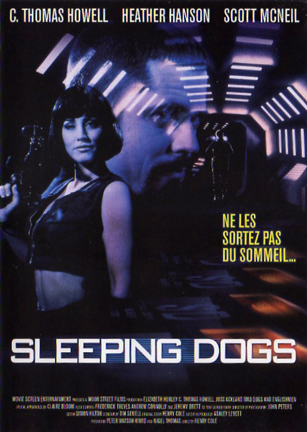 Unknown artwork from the movie Sleeping Dogs