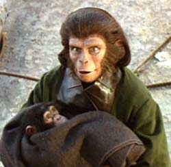 Is Zira's baby representing a threat for society ? - Escape from the Planet of the Apes (Escape from the Planet of the Apes)