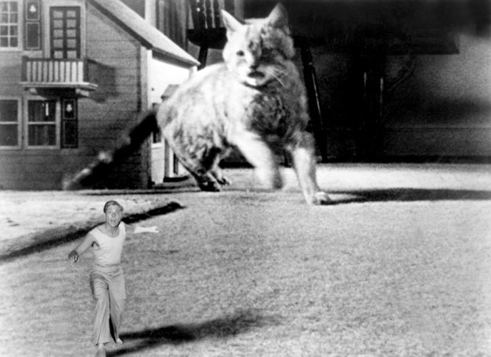 1957, The Incredible Shrinking Man: Film, 1950s | The Red List