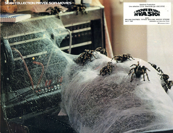 Photo de 'L'horrible invasion' - ©1977 Arachnid Productions Ltd. - L'horrible invasion (Kingdom of the Spiders) - cliquez sur la photo pour la fermer