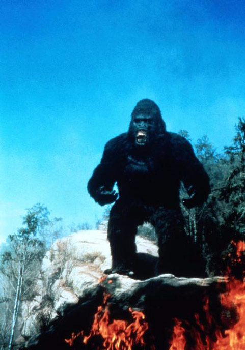 Photo de 'King Kong 2' - ©1986 De Laurentiis Entertainment Group - King Kong 2 (King Kong Lives) - cliquez sur la photo pour la fermer