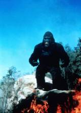 Still from 'King Kong Lives' - ©1986 De Laurentiis Entertainment Group - King Kong Lives (King Kong Lives)