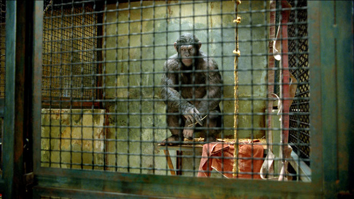 Photo de 'La planète des singes : les origines' - ©2011 20th Century Fox - La planète des singes : les origines (Rise of the Planet of the Apes) - cliquez sur la photo pour la fermer