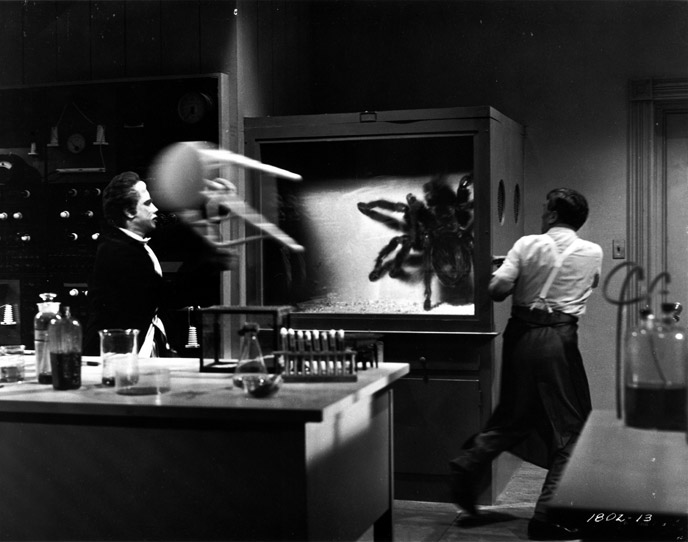 Photo de 'Tarantula' - ©1955 Universal International Pictures (UI) - Tarantula (Tarantula) - cliquez sur la photo pour la fermer