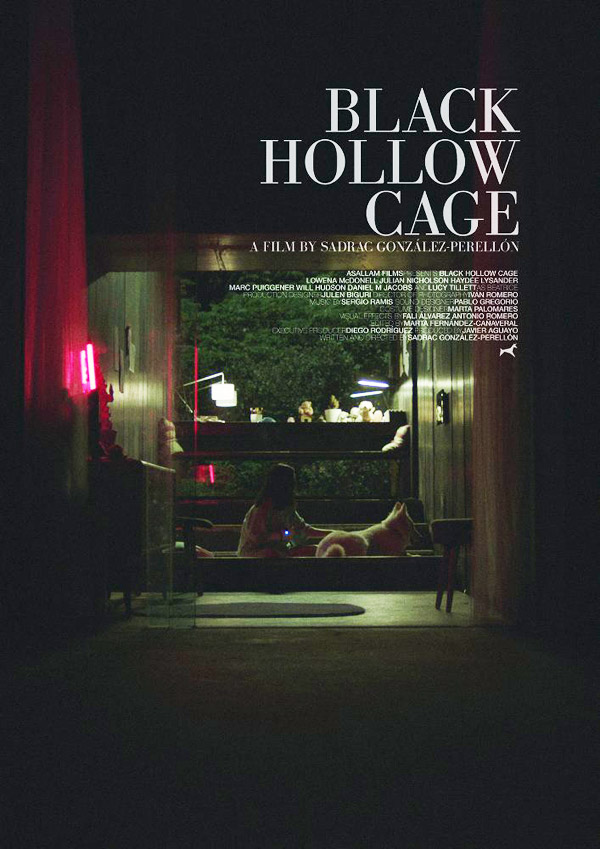 International poster from the movie Black Hollow Cage