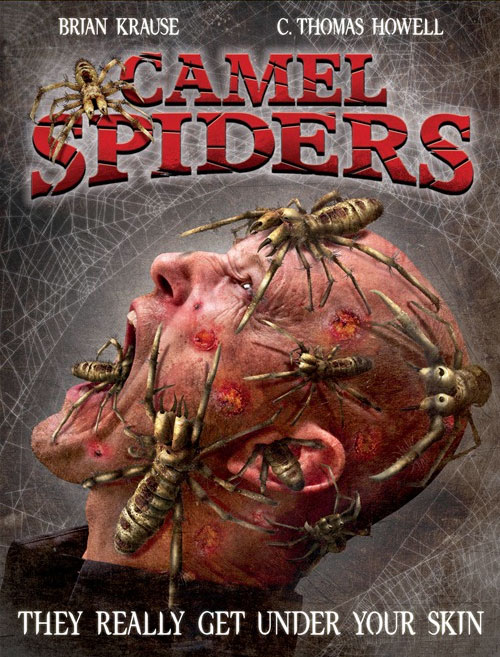 Us artwork from the movie Camel Spiders