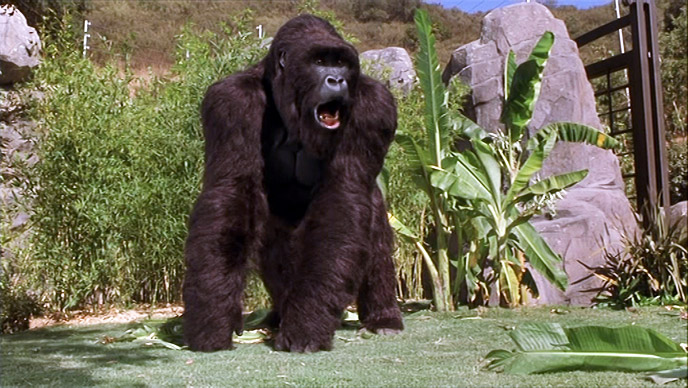 Photo de 'Mon ami Joe' - ©1998 Walt Disney - Mon ami Joe (Mighty Joe Young) - cliquez sur la photo pour la fermer