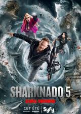 Affiche du film 'Sharknado 5: Global Swarming'